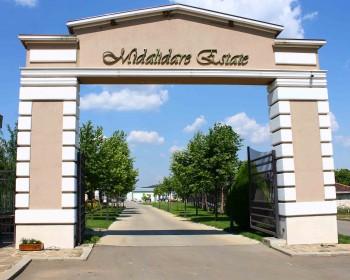 Винарска изба Midalidare Estate